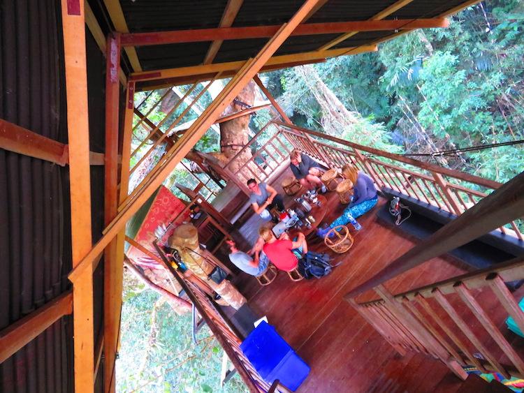 De Magische Boomhut : Gibbon experience laos boomhut u iris timmermans u we are travellers