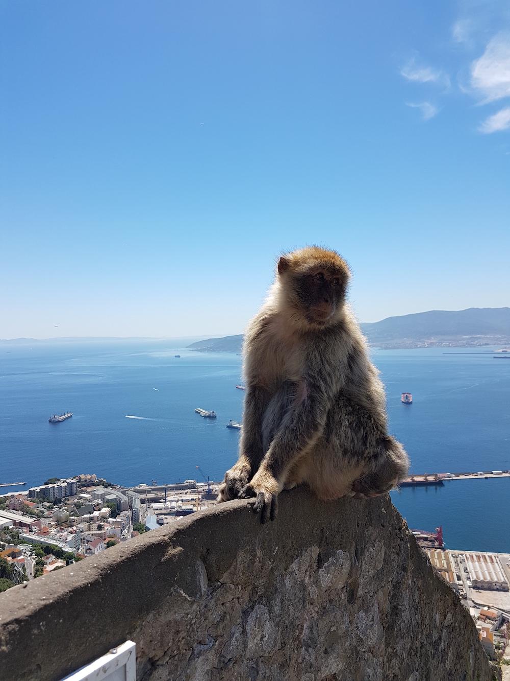 Gibraltar costa del sol