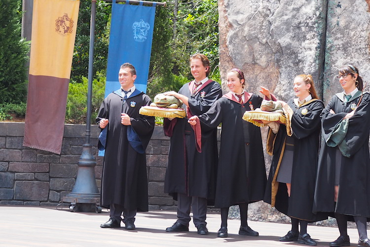 Harry Potter World leerlingen