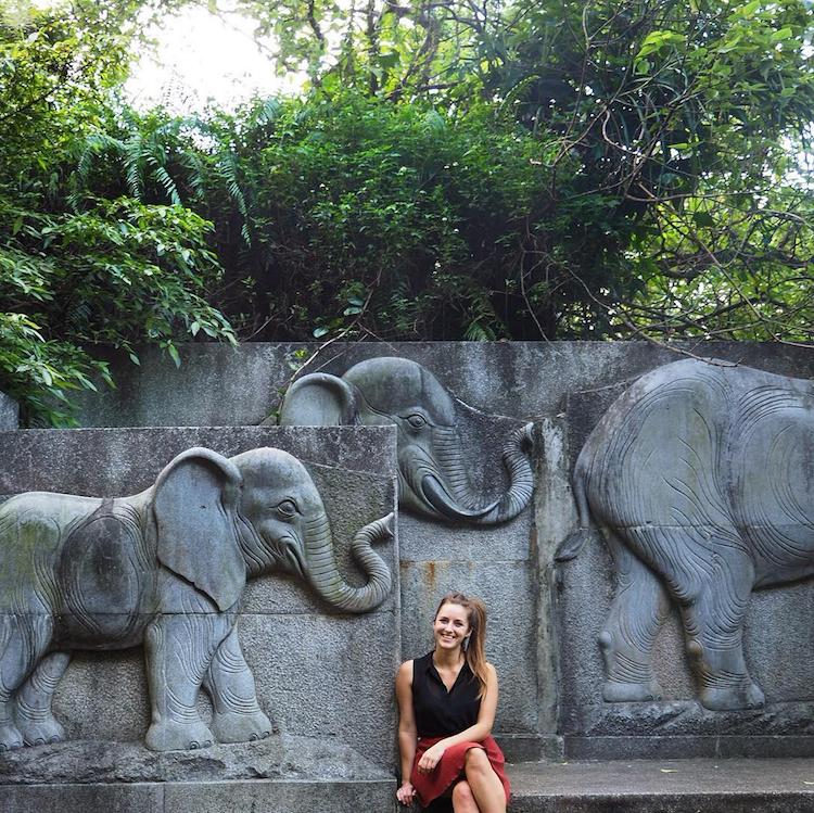 hikes-taiwan-elephant-mountain-taipei