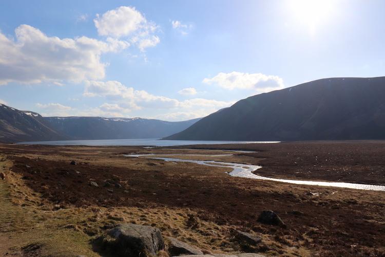 Hooglanden Schotland Cairngorms park