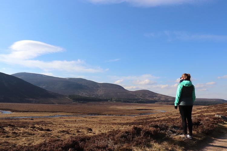 Hooglanden in Schotland Cairngorms