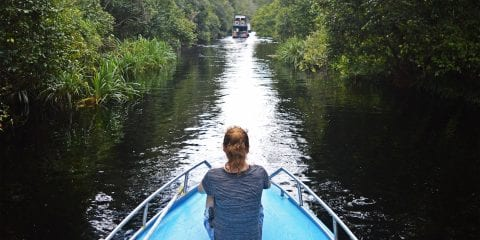 Indonesie Borneo Jungle Klotok