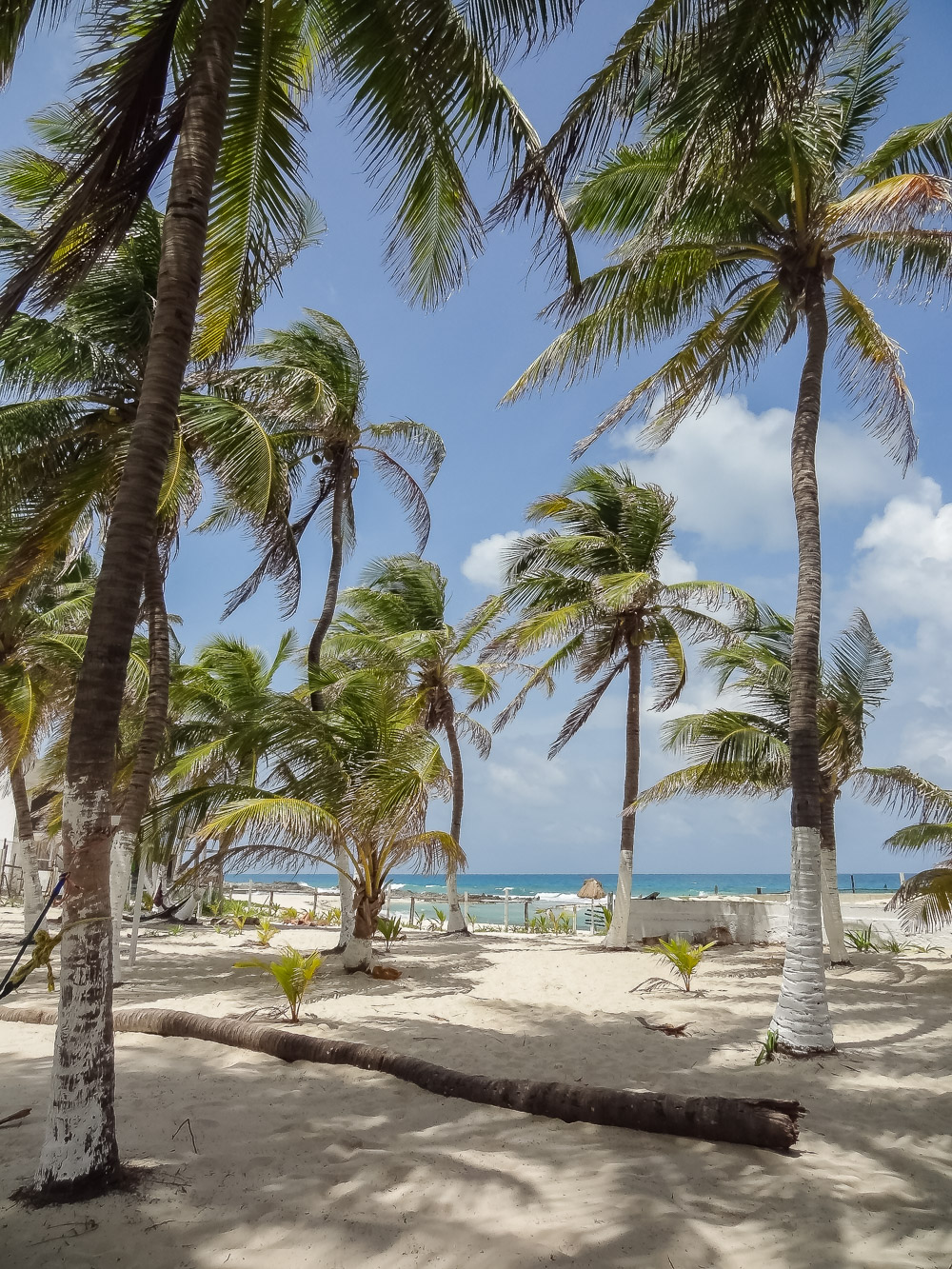 Isla Mujeres Poc-Na hostel-2