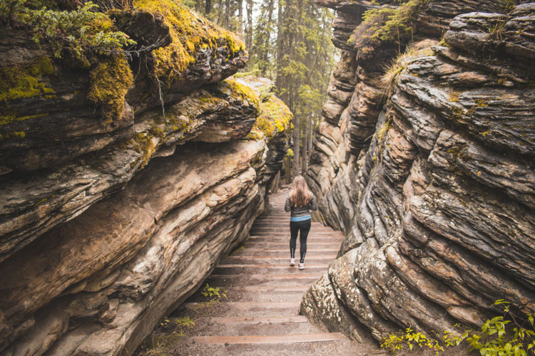 Jasper National Park Canada Athabasca Falls