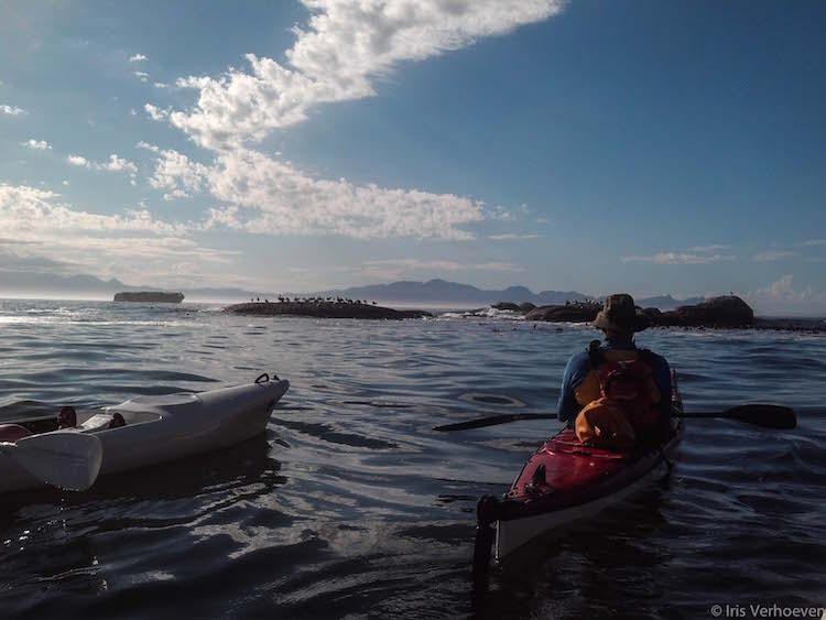 Kayak in omgeving kaapstad tips
