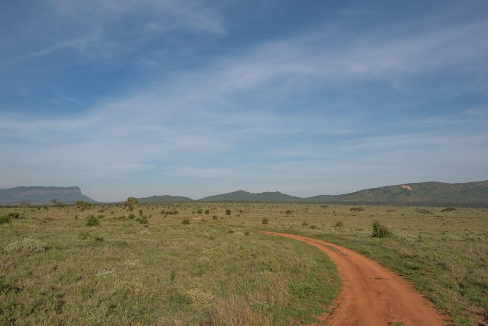 Kenia safari Taita Hills