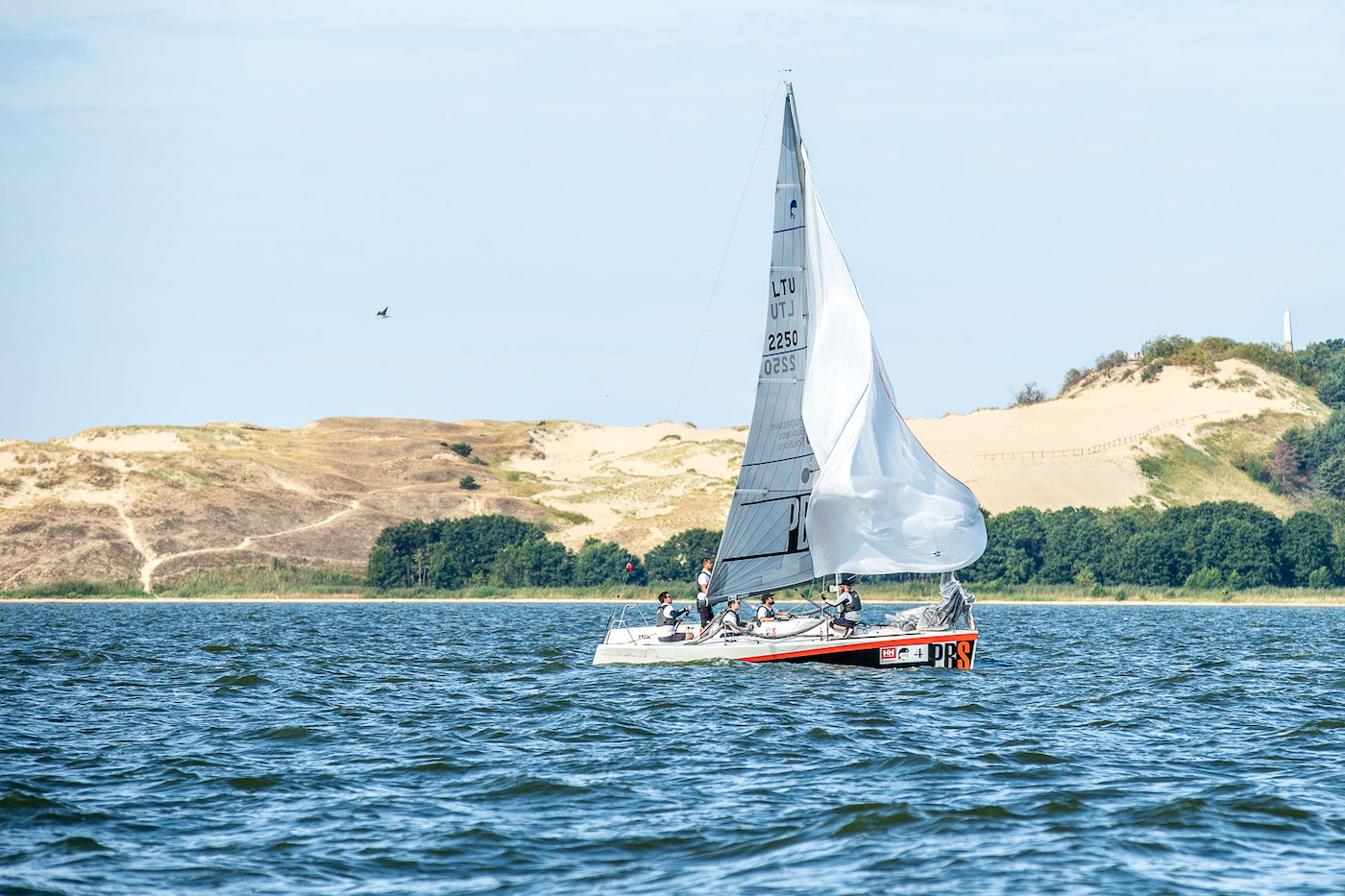 Koerse Schoorwal Parnidis dune varen