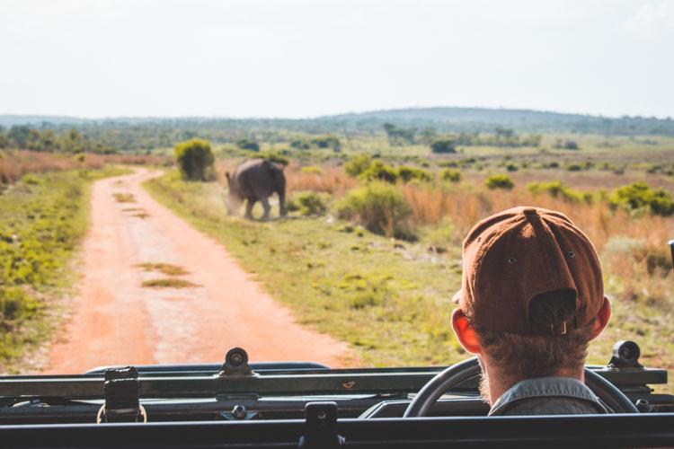 Kololo Game Reserve safari_