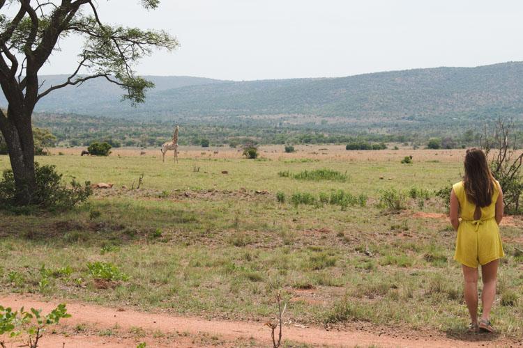 Kololo Game Reserve wandeling safari giraffe