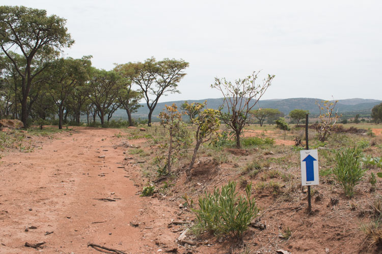 Kololo Game Reserve wandeling safari