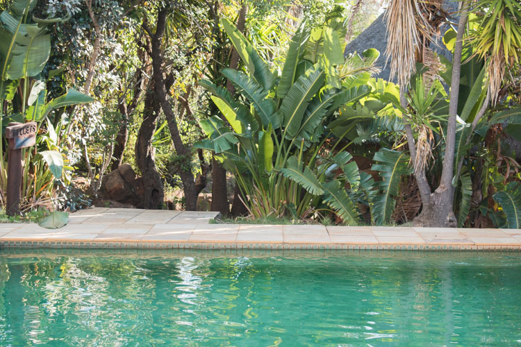 Kololo game reserve zwembad buiten