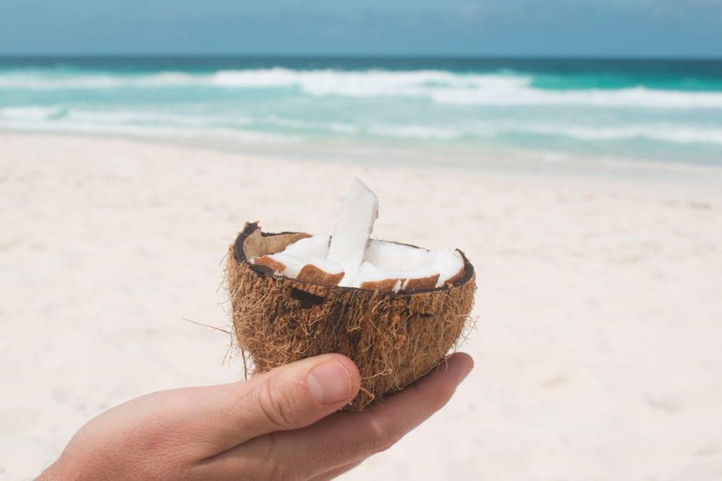 La Digue petite anse kokosnoot eten