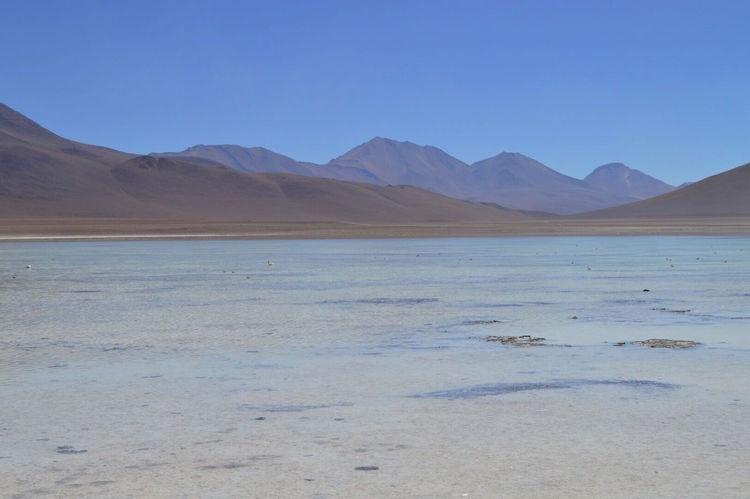 laguna-blanca-onderweg-salar-de-uyuni-bolivia