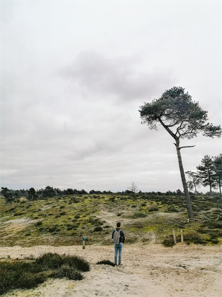 Landgoed Bleijenbeek wandelen Maasduinen limburg