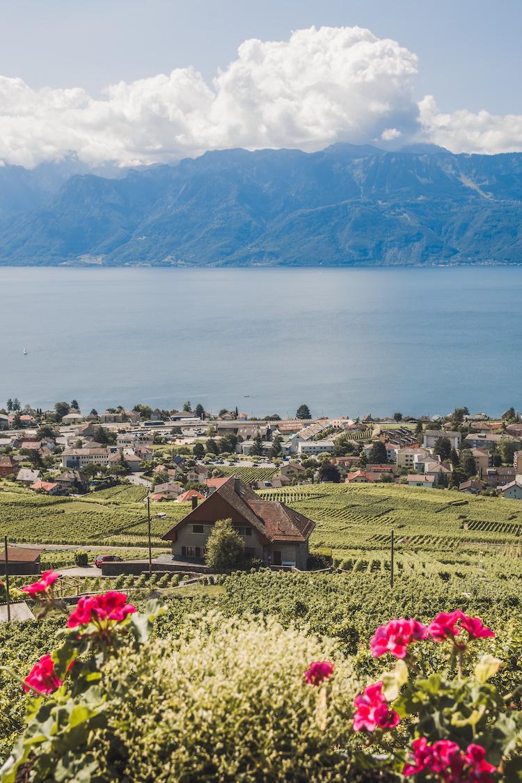 Lavaux omgeving lausanne uitzicht meer van geneve