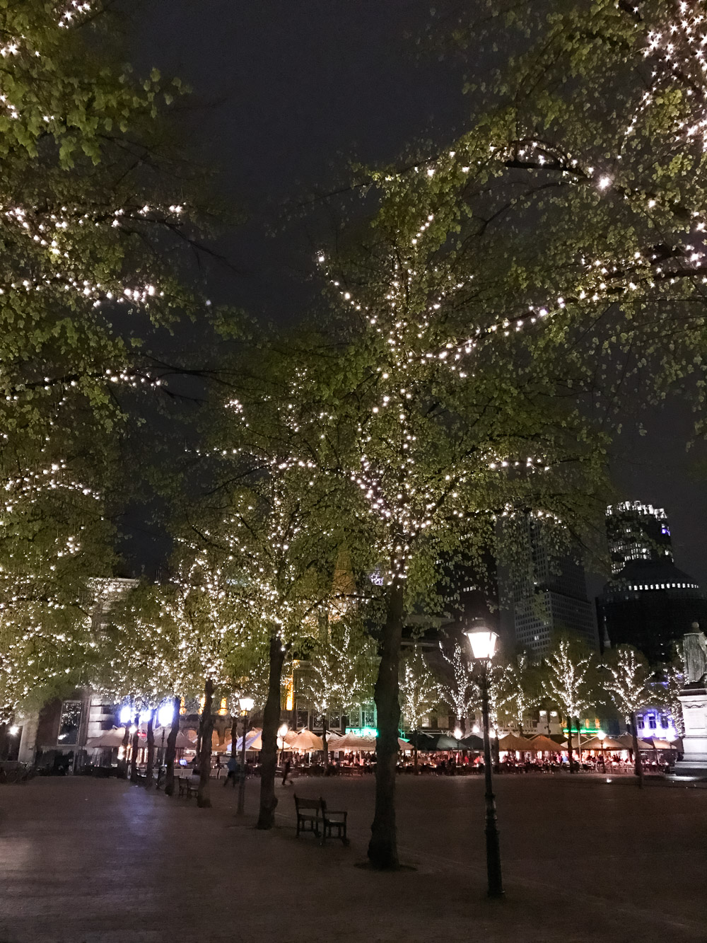 Leuke steden Nederland Den Haag