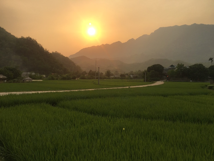 Mai Chau rijstvelden vietnam