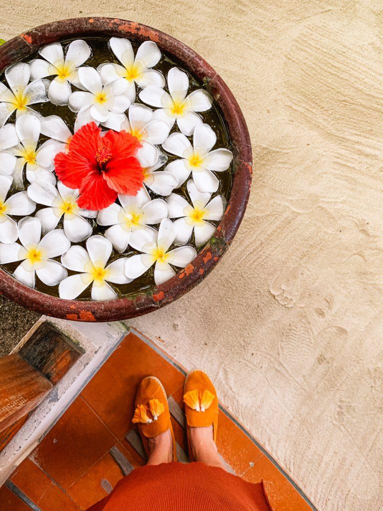 Malediven maafushi hotels