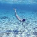 Margot van der Meer