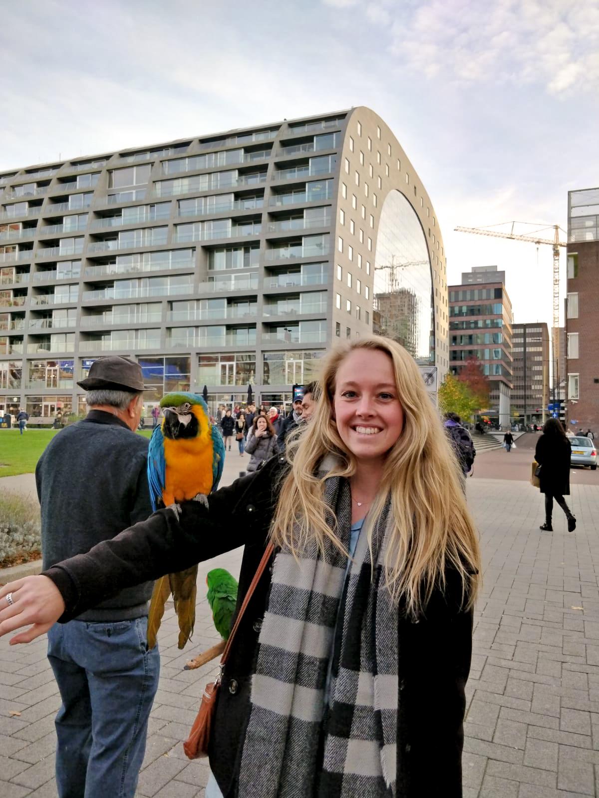 Buiten de markthal van Rotterdam