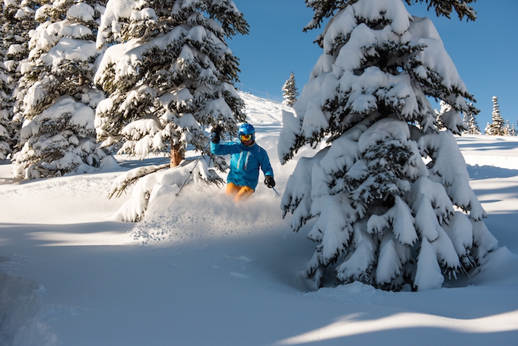 Marmot-Basin-Powderday canadian rockies wintersport