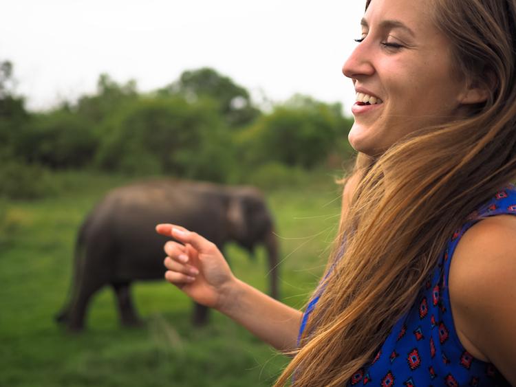 Minneriya-National-Park-olifanten-dansje
