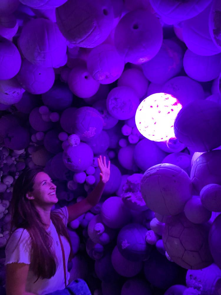 Moco Museum Daniel Arsham purple cave