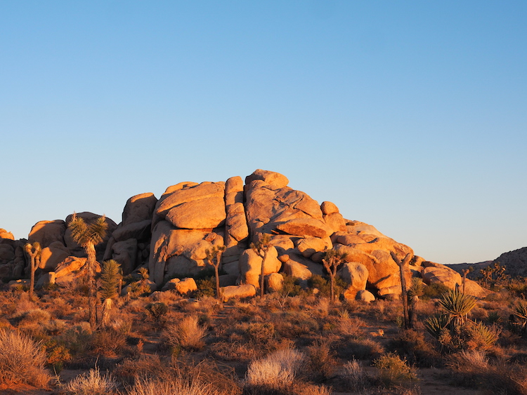 Zonsondergang mojave woestijn
