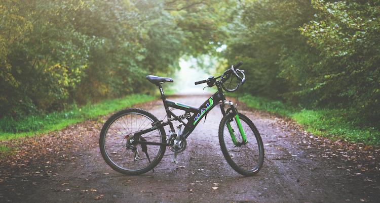 Mooiste Mountainbike Routes in Nederland