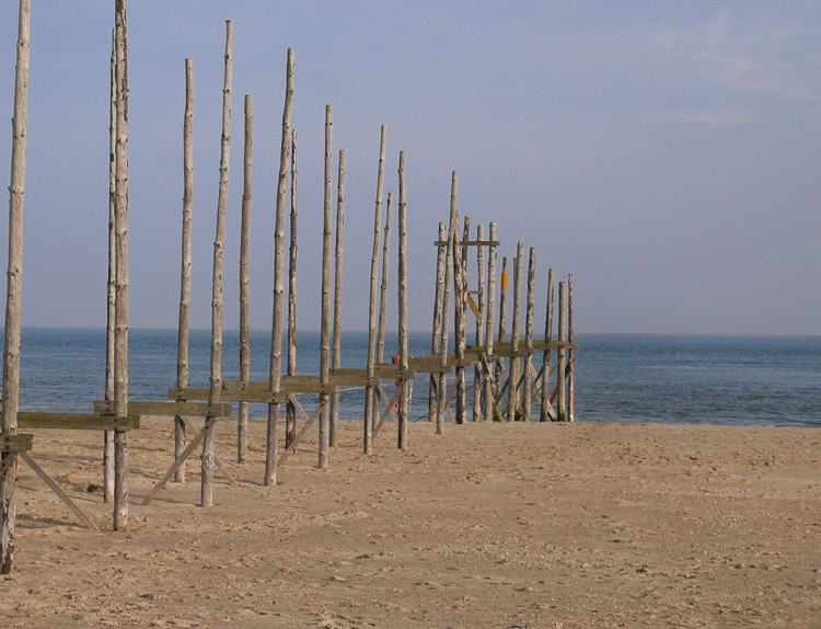 Mooiste stranden nederland texel