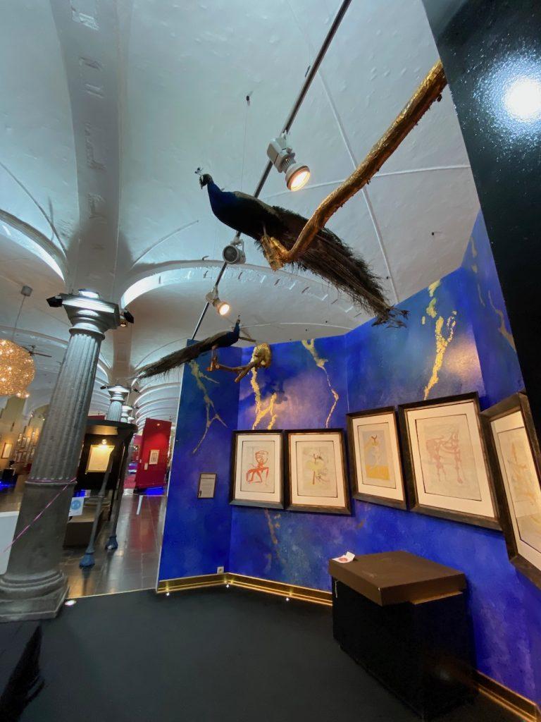 Museum Salvador Dali Brugge