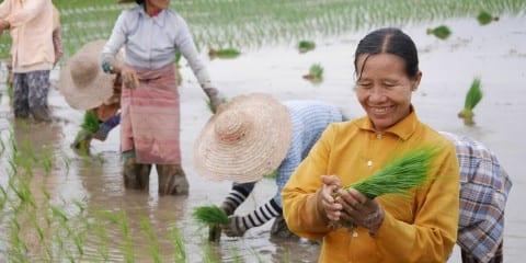 Myanmar inle meer reizen