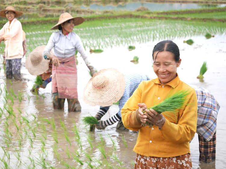 Myanmar locals