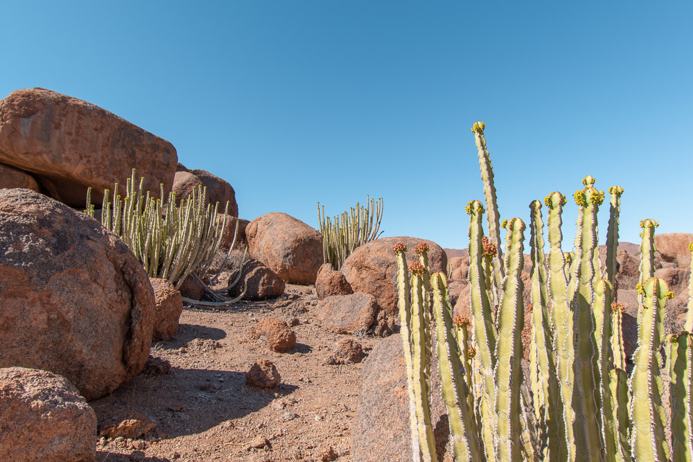 Namibie rondreis natuur
