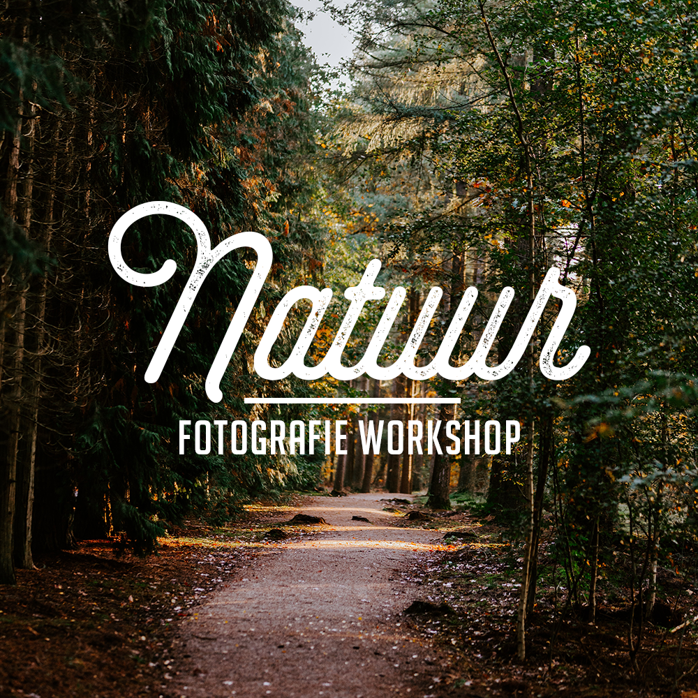Natuur Fotografie Workshop