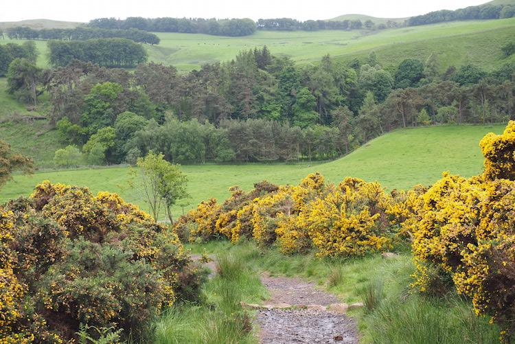 Pentland National park Schotland