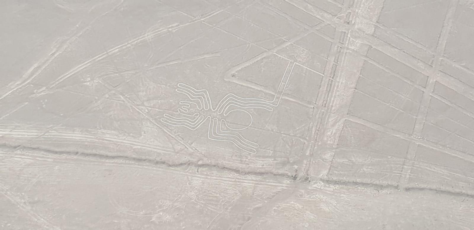 Nazca Lijnen bezoeken spin peru