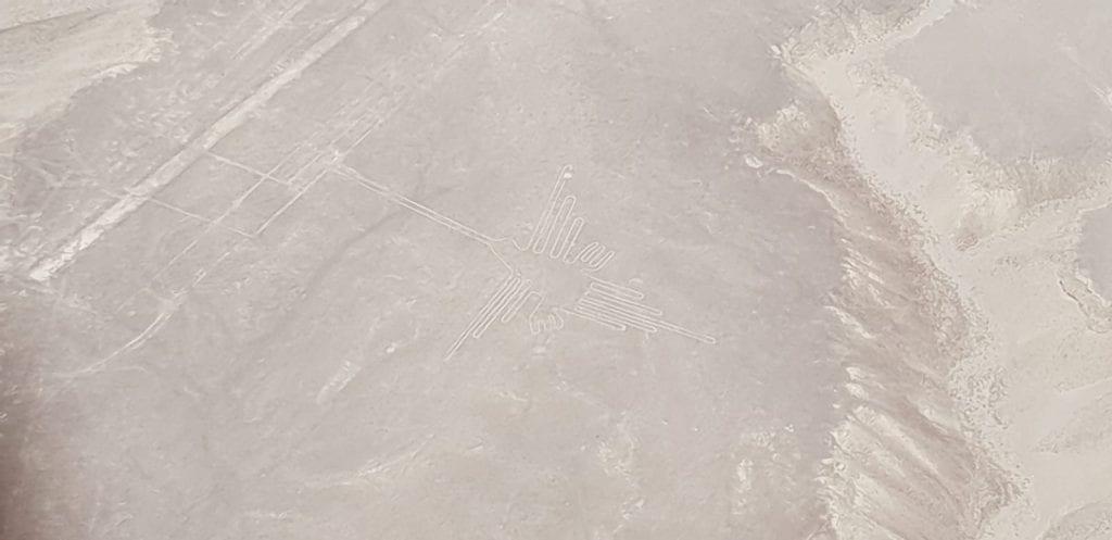 Nazca lijnen bezoeken vogel