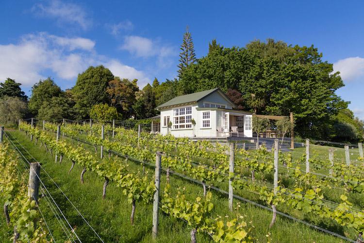 Nieuw Zeeland Wijn tips