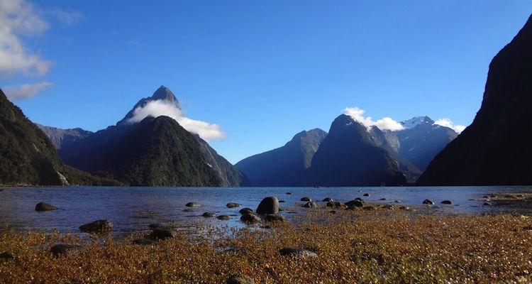 Nieuw zeeland tips backpacken backpackers