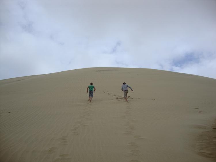 Northland Nieuw-zeeland Te Paki Giant Sand Dunes (2)