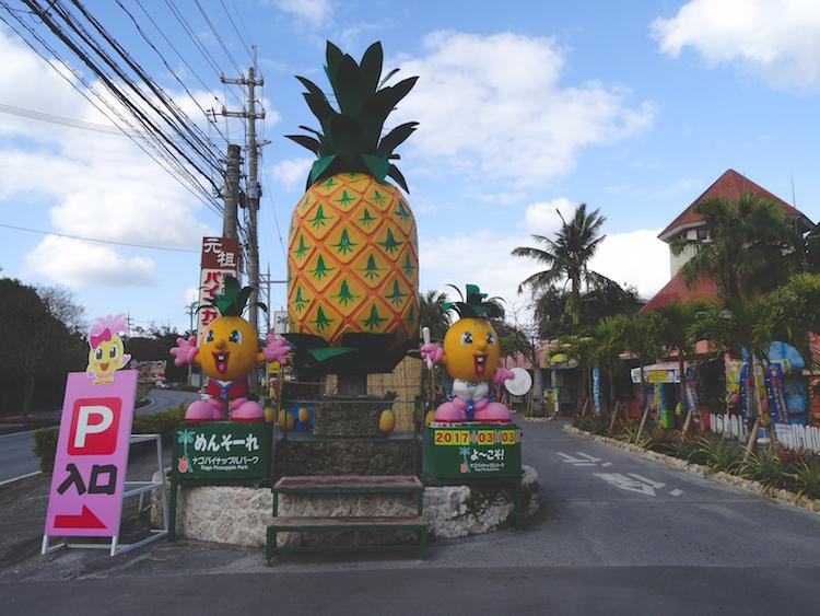 Okinawa-Japan-Ananas-plantage