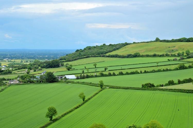 Oost Ierland Dunamase weilanden