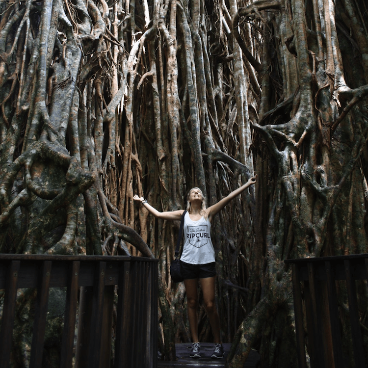 Oostkust australie hoogtepunten cairns daintree