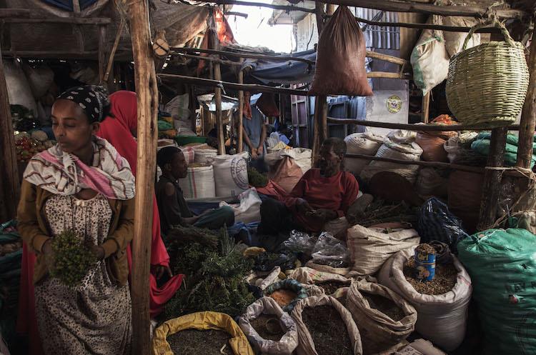 Op reis naar Ethiopie reizen harar