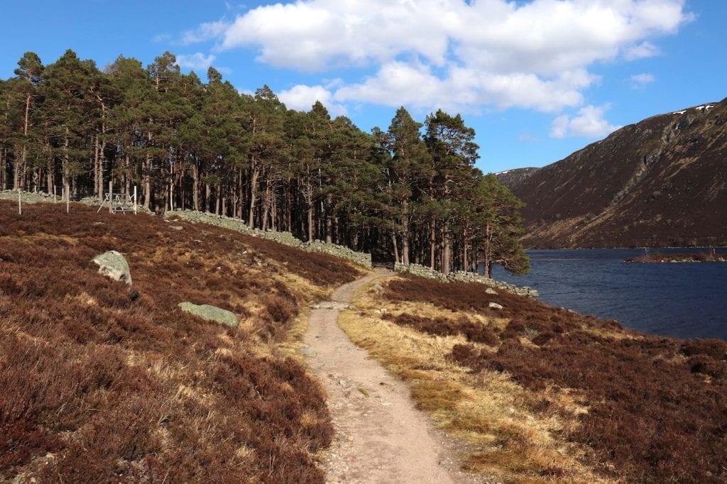Pad Schotland Cairngorms National Park