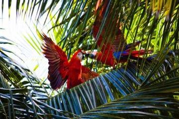 Hangmat Zuid Amerika.Zuid Amerika Wearetravellers Part 4