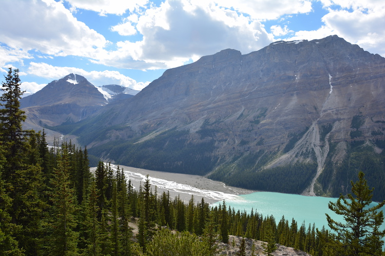 Peyto Lake in West Canada