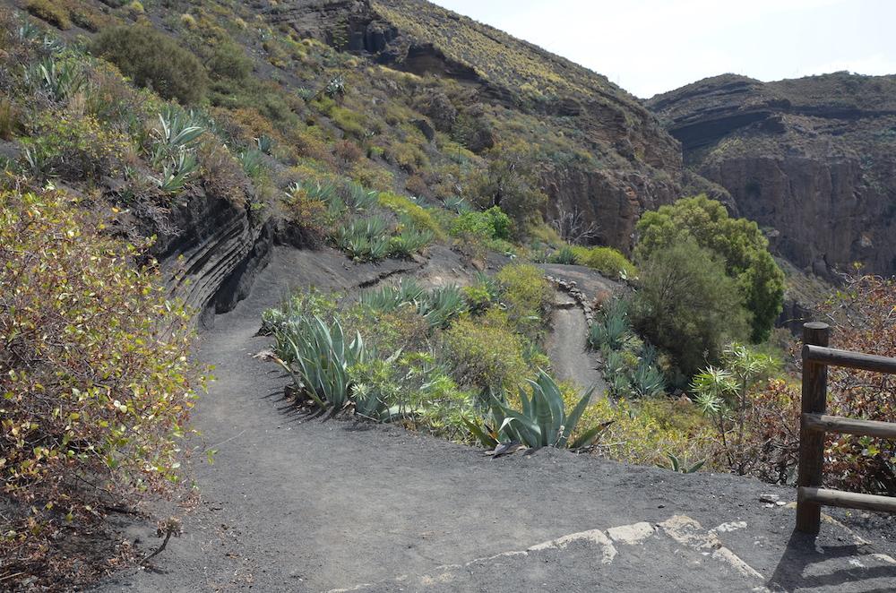 Pico de Bandama, Gran Canaria bezienswaardigheden